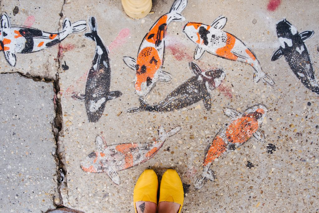 Coco's feet at the edge of a frame looking down at a sidewalk painted with 8 colorful koi fish.